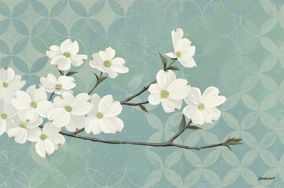 Dogwood Blossoms Wall Mural Amp Photo Wallpaper Photowall