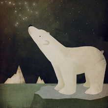 Fototapete - Constellations Polar Bear