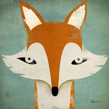 Canvas print - Fox