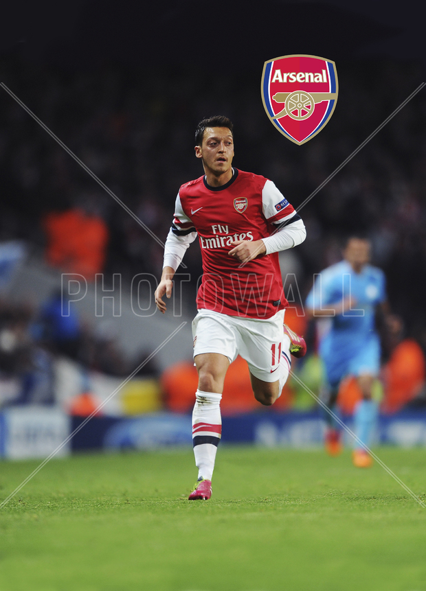 Arsenal f c mesut zi wall mural photo wallpaper for Arsenal mural wallpaper