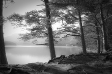 Fototapet - Lake - Grey