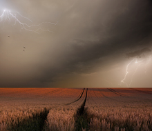 Wall mural - Lightning Field