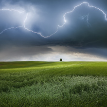 Fototapet - Summer Lightning