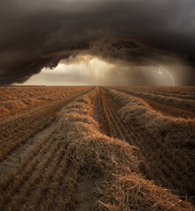 Wall mural - Stormy Fields