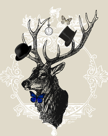 Canvas print - Gentleman Stag