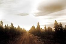 Fototapet - Road to Nowhere