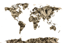 Fototapeta - Butterfly World Map