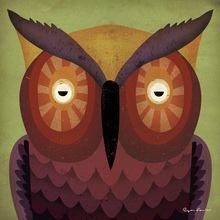 Canvas print - Ryan Fowler - Owl