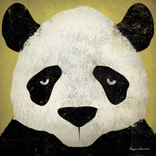 Canvas print - Ryan Fowler - Panda