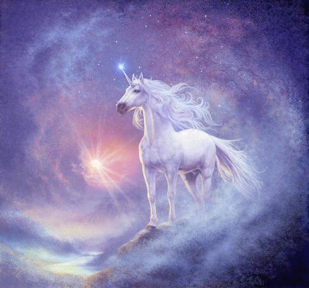 astral unicorn wall mural photo wallpaper photowall
