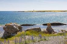 Fototapet - Gotland Seaside