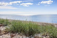 Fototapet - Gotland Beach