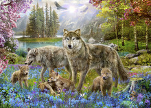 Canvas print - Spring Wolf Family