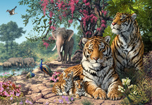 Wall Mural - Tiger Sanctuary