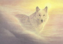 Wall mural - Mystic Wolf