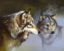Canvas print - Frost Wolves