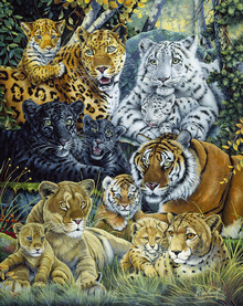 Canvas print - Wild Cats