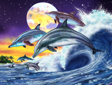 Wall Mural - Dolphins