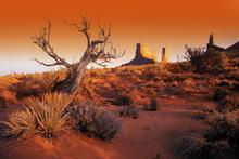 Fototapet - Red Landscape