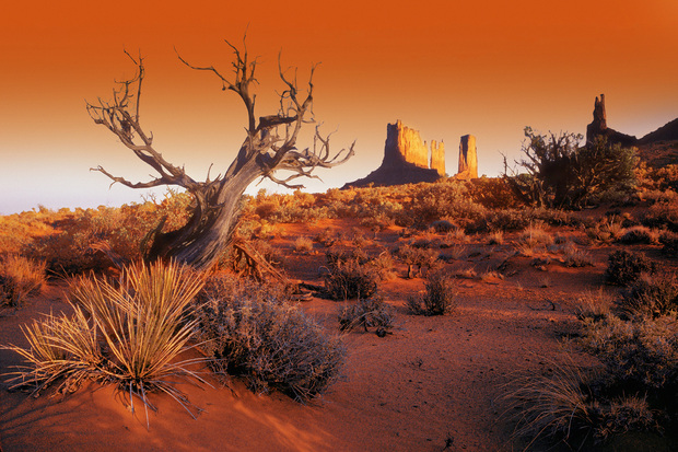 Red Landscape Wall Mural Amp Photo Wallpaper Photowall
