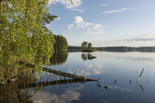 Canvas print - Swedish Lake Landscape