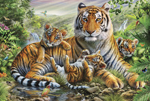 Fototapet - Tiger and Cubs