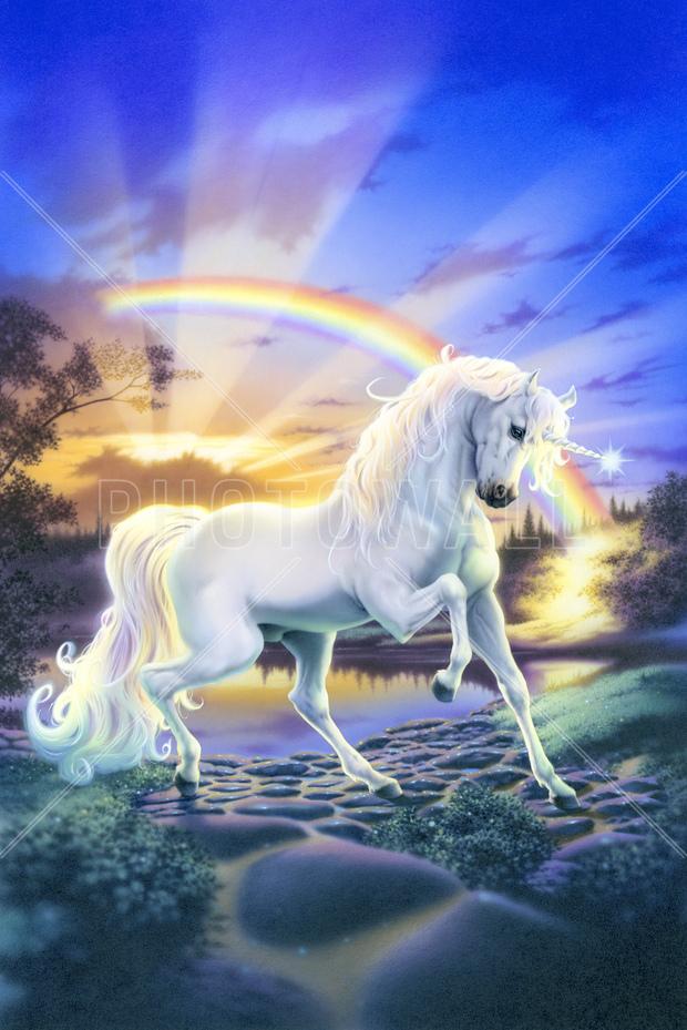 rainbow unicorn wall mural photo wallpaper photowall