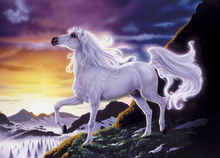 Canvas print - Mountain Fantasy Horse