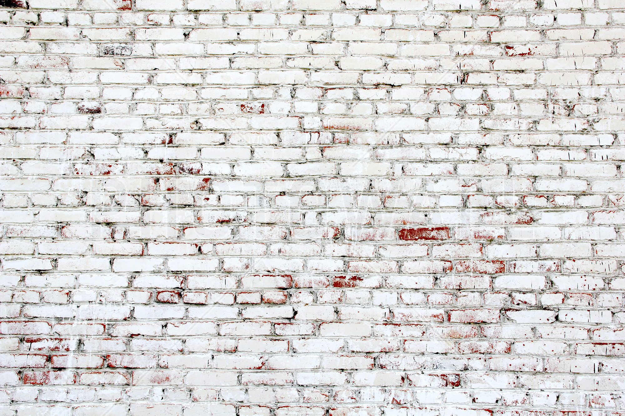 Great Old Brick Wall With White And Red Bricks Part 30