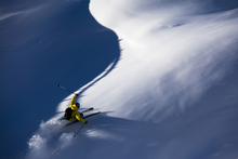Canvas-taulu - Powder Snow Skiing