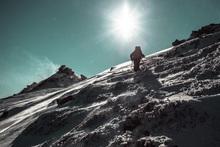 Fototapet - Winter Hike