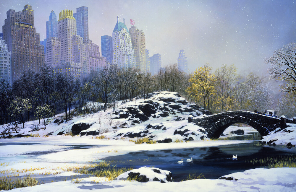 Winter in central park wall mural photo wallpaper for Central park mural