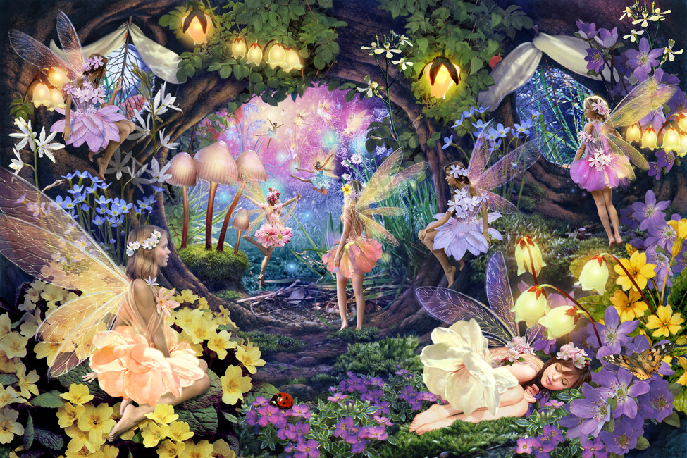 Fairy hollow wall mural photo wallpaper photowall for Fairy garden mural