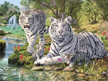 Leinwandbild - White Tiger Clan