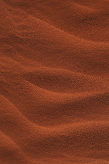 Wall mural - Red Rippled Sand