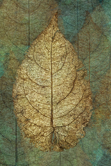 Canvas print - Golden Copper Leaf