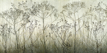 Wall mural - Wildflowers Lining the Trail - Kaki