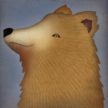 Wall mural - Brown Bear Wow