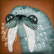 Wall mural - Walrus Wow