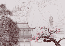 Wall Mural - Japanese Cherry Blossom