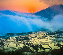 Canvastavla - Sunrise over Terraced Rice Fields
