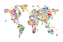 Fotobehang - Dogs World Map Multicolor