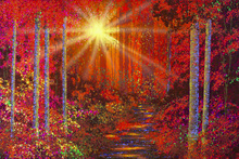 Canvas print - Crimson Forest