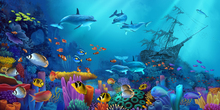 Wall mural - Ocean Colors