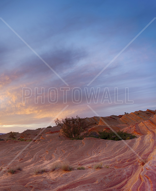 Desert scene wall mural photo wallpaper photowall for Desert mural wallpaper