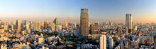Fototapete - Midtown, Roppongi Hills and Tokyo Tower at Sunset