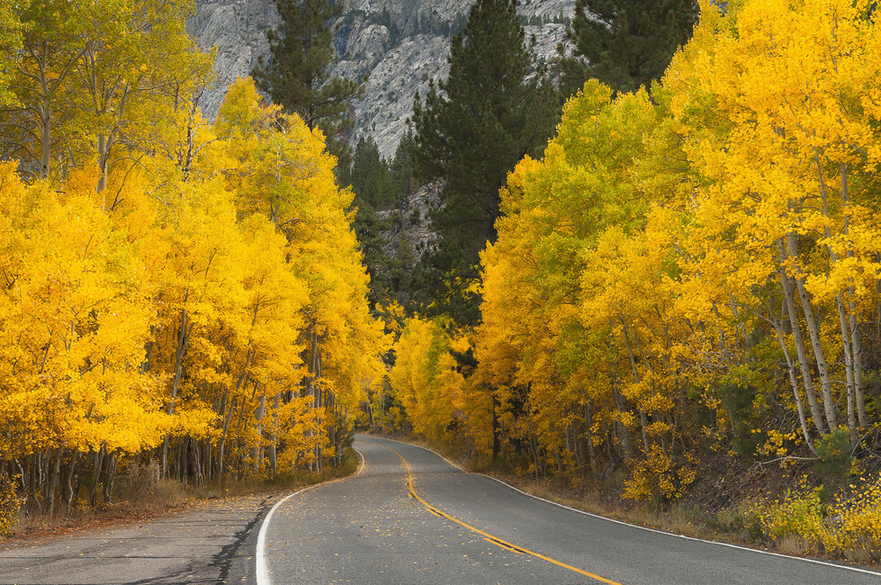 Eastern Sierra Autumn Landscape Wall Mural Amp Photo