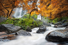 Wall mural - Autumn Waterfall