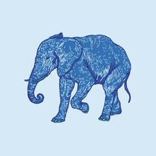 Canvas print - Elephant Blues