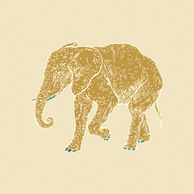 Canvas-taulu - Elephant Morning